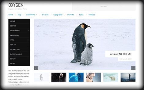 WordPress Oxygen Teması